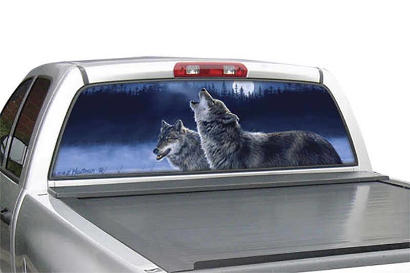 window car graphics