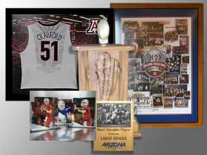 university of arizona licensed products