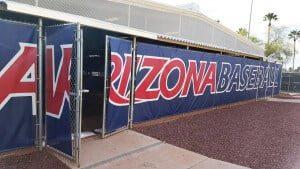 vinyl baseball banner
